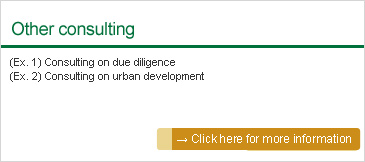 Other consulting: (Ex. 1) Consulting on due diligence (Ex. 2) Consulting on urban development