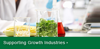 Supporting Growth Industries